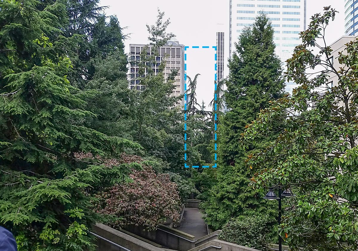 Image showing how overgrown trees in Freeway Park have blocked views to downtown Seattle.